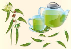Chá de eucalipto vetor