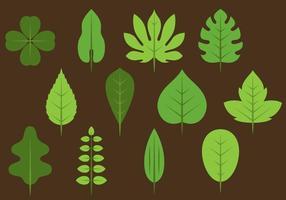 Ícones de folhas verdes vetor