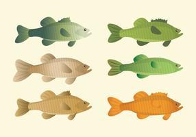 Coleção de peixes vetoriais vetor