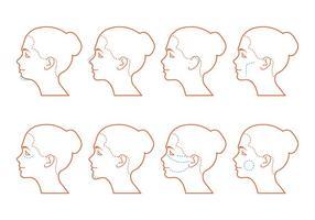 Cirurgia do rosto vetor