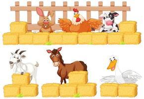 conjunto de animais de fazenda e feno