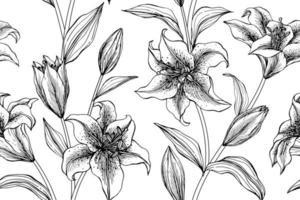 lírio mão desenhada botânica padrão sem emenda vetor