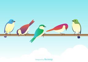 Pássaros coloridos do vetor livre
