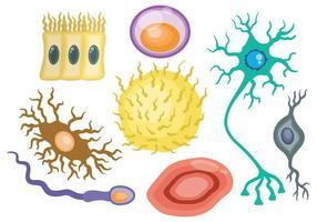 Vetor de ícones de neurônio grátis