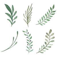 conjunto de galho de folha verde vetor