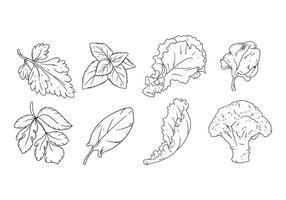 Vector de legumes de desenho de mão grátis