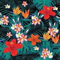 verão com frangipani pastel rosa vetor