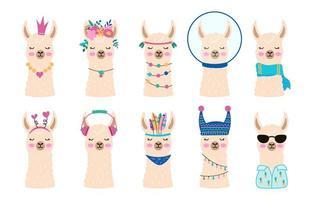 conjunto de rostos de alpaca ou lhama