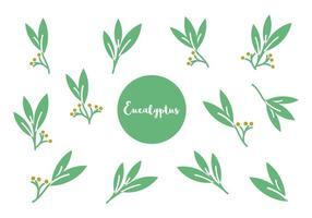 Vector grátis de ícones de eucalipto