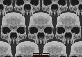 Vector Abstract Seamless Pattern of Skulls