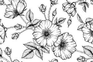 folhas e flor rosa selvagem sem costura padrão mão desenhada