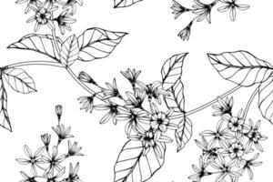 folhas e flor de videira de lixa desenhada mão padrão sem emenda vetor