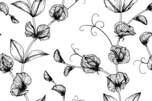 folhas e flor de ervilha doce desenhada mão padrão sem emenda vetor