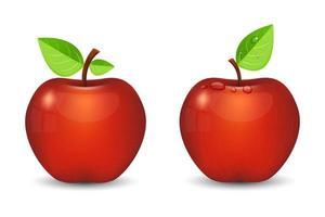 maçã deliciosa fresca isolada no fundo branco vetor