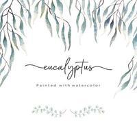 folhas de eucalipto pintadas com aquarela
