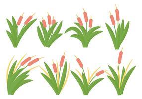 Vector grátis de ícones Cattails