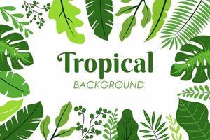 quadro de folhas tropicais vetor