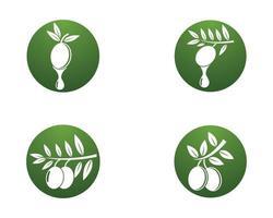 ícones de logotipo de azeite vetor