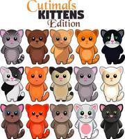 15 gatinhos fofos em um pacote vetor