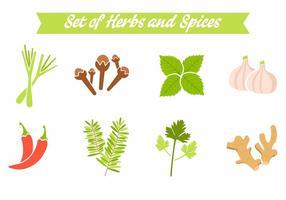 Vetor de especiarias e ervas grátis