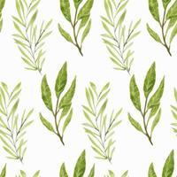 aquarela verde folha ramos sem costura padrão vetor