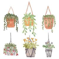 planta pendurada com conjunto aquarela pote vetor