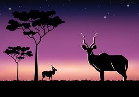 Savannah Kudu à noite vetor