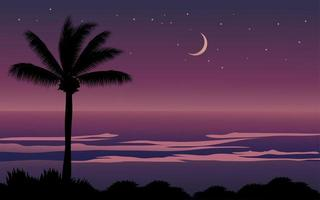 praia tropical noite