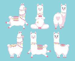 conjunto bonito de lhamas ou alpacas vetor