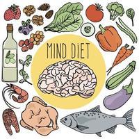 cérebro saudável mente dieta conjunto de nutrição vetor