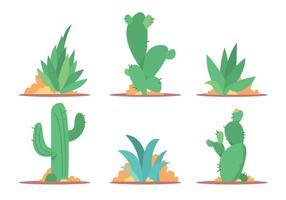 Conjunto de vetores de cactus e maguey