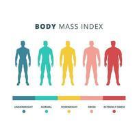 gráfico colorido de índice de massa corporal