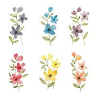 coleção aquarela colorida flores silvestres vetor