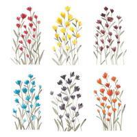 conjunto aquarela de flores silvestres vetor