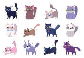 gatos bonitos sortidos vetor