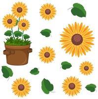 conjunto de plantas de girassol fofos
