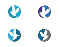 conjunto de ícones de beija-flor redondo