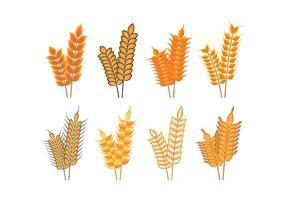 Ícones de aveia de colheita vetor