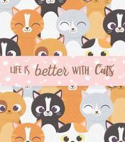 a vida é melhor com cartão de banner de inscrição de gatos vetor