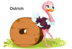 o para avestruz vetor