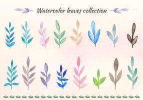 Coleção grátis de folhas de aquarela de vetores