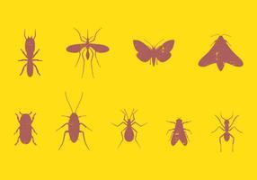 Conjunto de insetos de pragas
