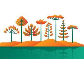 Vector de desenhos animados de araucária