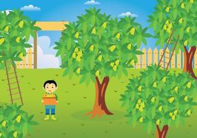 Ilustração grátis da árvore de manga