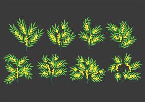 Ícones Mimosa vetor