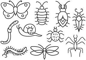 Vetores de insetos grátis