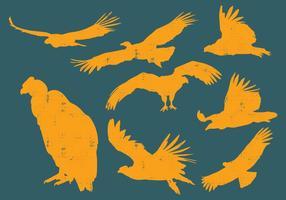 Silhuetas Condor vetor