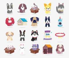 coleção completa de animais de estimação vetor