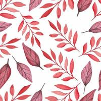 lindas folhas vermelhas aquarela padrão sem emenda vetor
