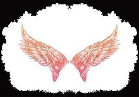 fundo de esboço de asas de pássaro rosa vetor